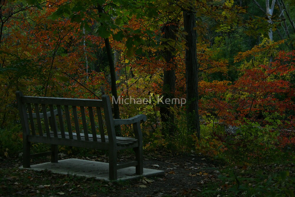 Bench in the Fall by Michael  Kemp