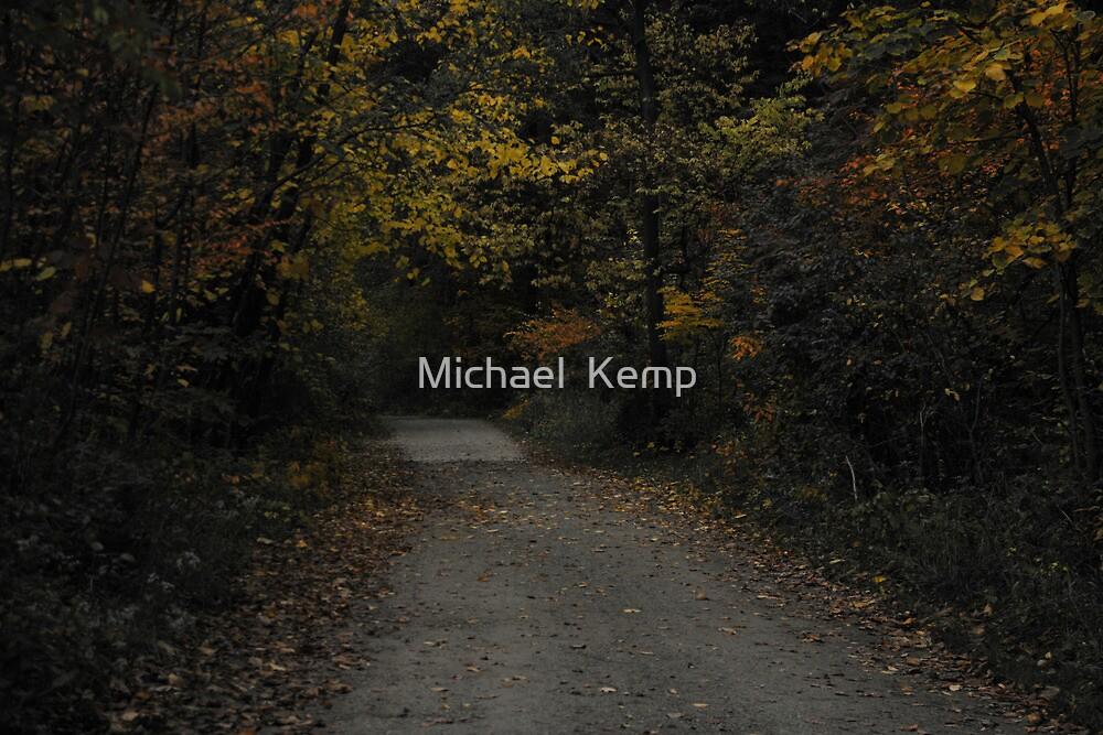 Nichols Arboretum in the Fall by Michael  Kemp