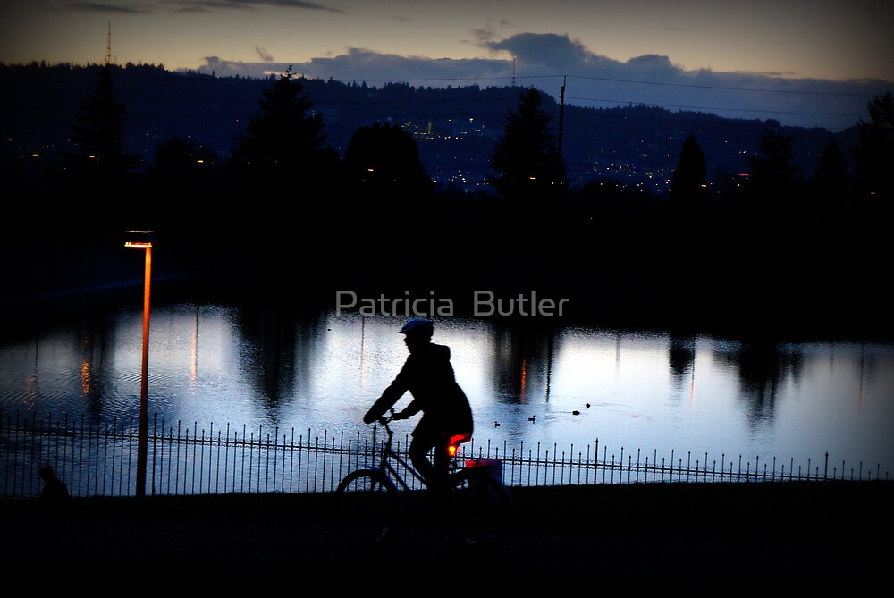 She Rode into the Sunset ... by Patricia  Butler
