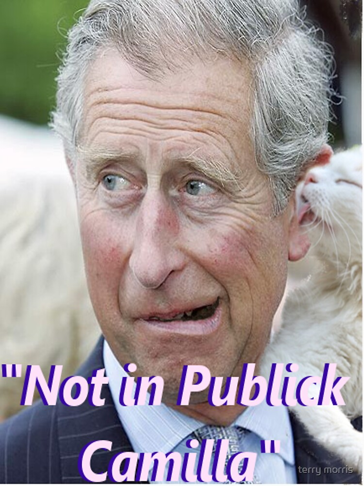 """Not in Publick Camilla by terrytheboy2000"