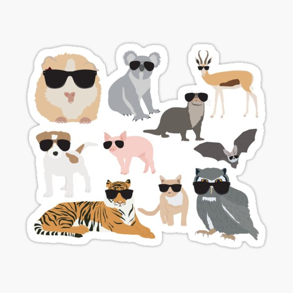 Cool and Funny Animals Wearing Sunglasses  Sticker