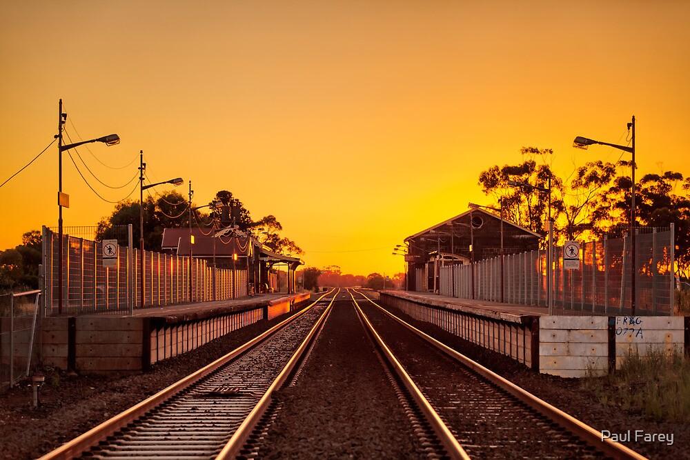 Little River Rail by Paul Farey