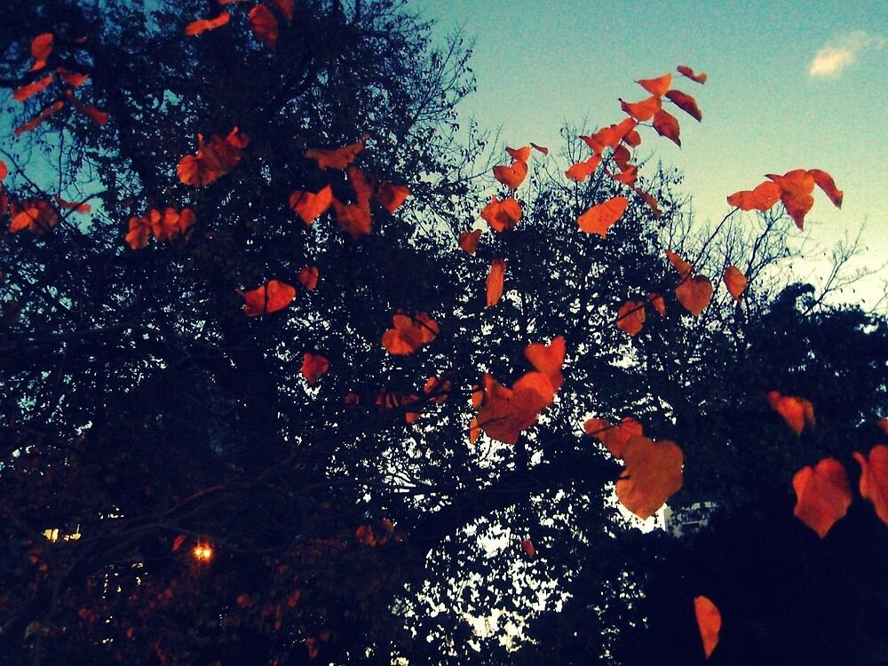 last leaves on the branch by tanyamatheson