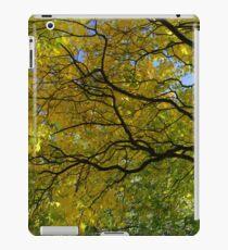 Salcey Forest in Autumn iPad Case/Skin