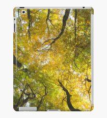 Autumn Glory iPad Case/Skin