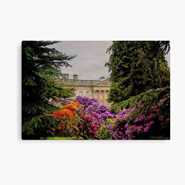 Wentworth Castle 1 Canvas Print
