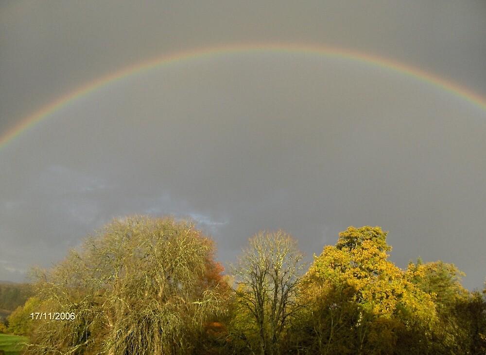 Rainbows by dewlish