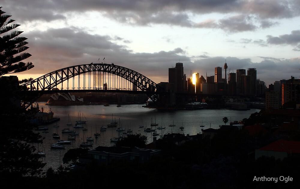 Sydney - Tower of Gold by Anthony Ogle