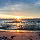 November Sunrise by Denise Sparks