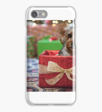 Yorkie in a Box iPhone Case/Skin