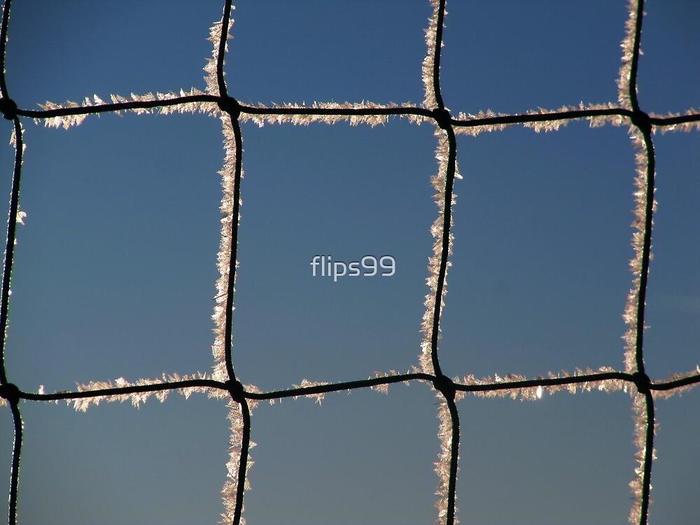 Frozen net by flips99