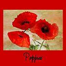 Poppies by inkedsandra