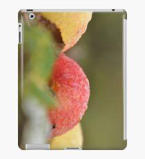 Dewy  Apples  IPad case iPad Case/Skin