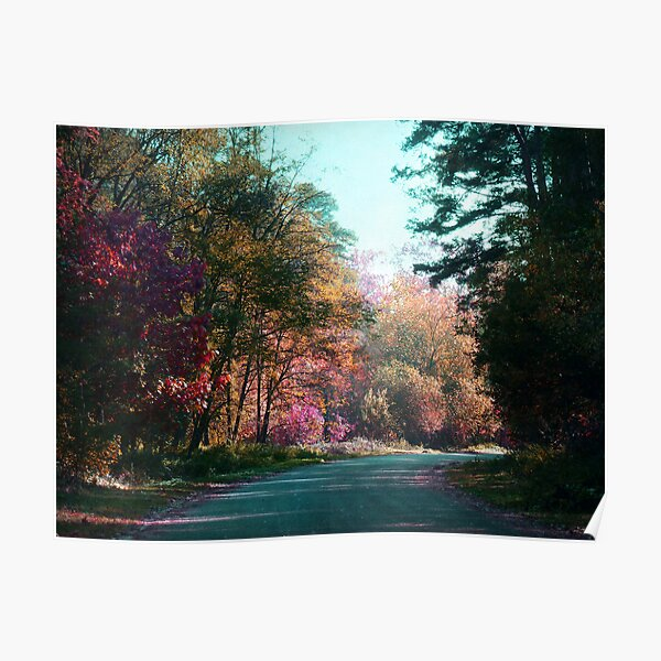 The road through the forest Poster