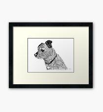 Raggy dog - Terrier Framed Print