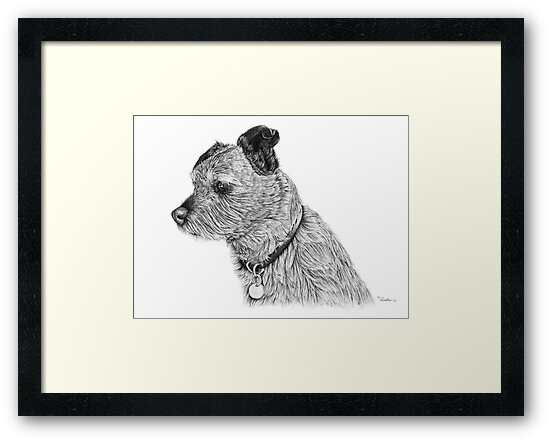 Raggy dog - Terrier by Paul Stratton