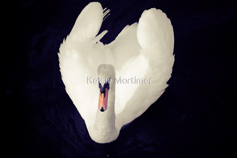 Swan Heart by Kelsie Mortimer