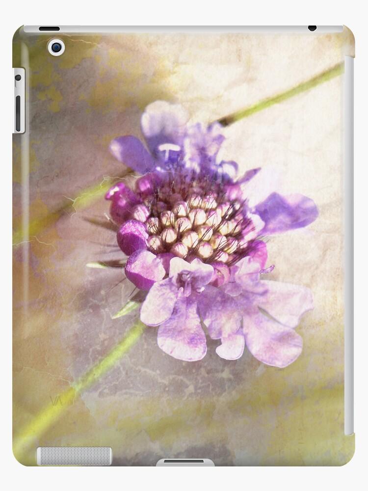 Flower texturized by nikavero