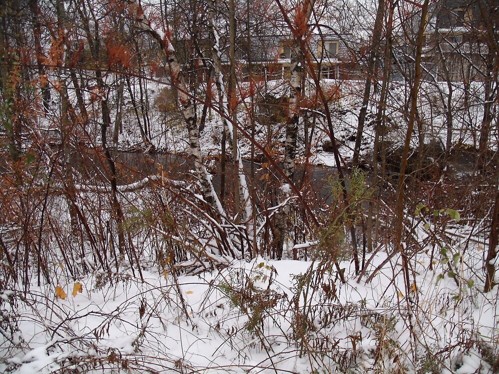 frist snow nov. 2012 by mimimay