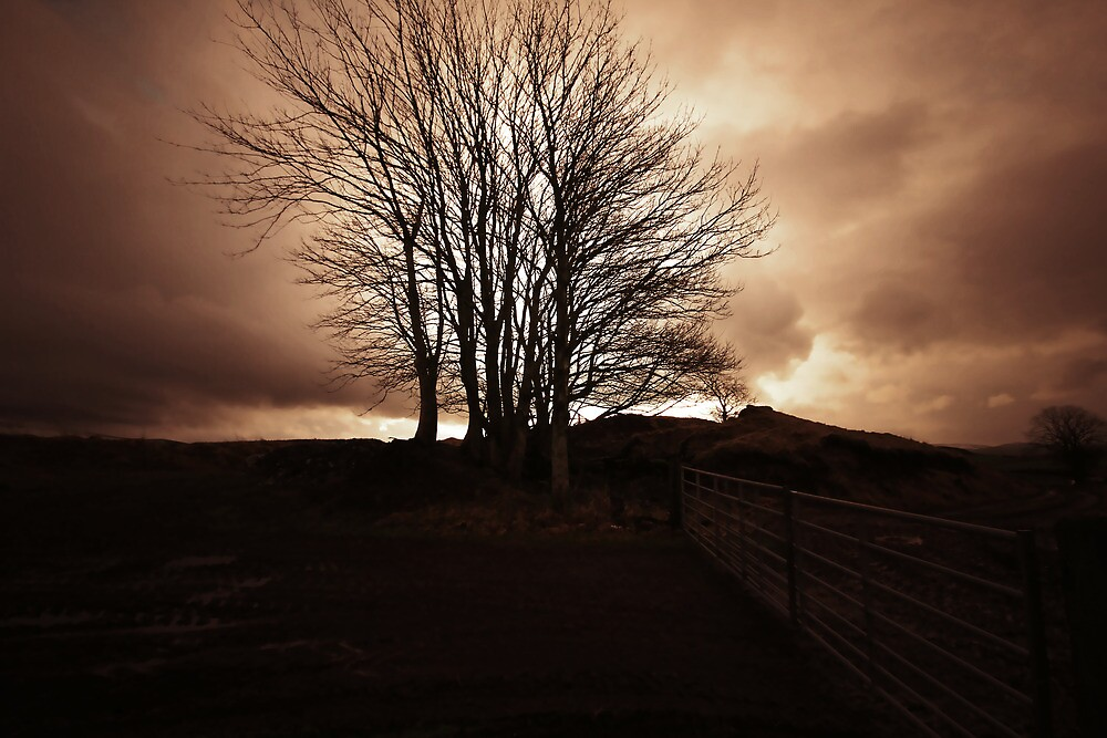 THE STORMS OF 2012 by leonie7