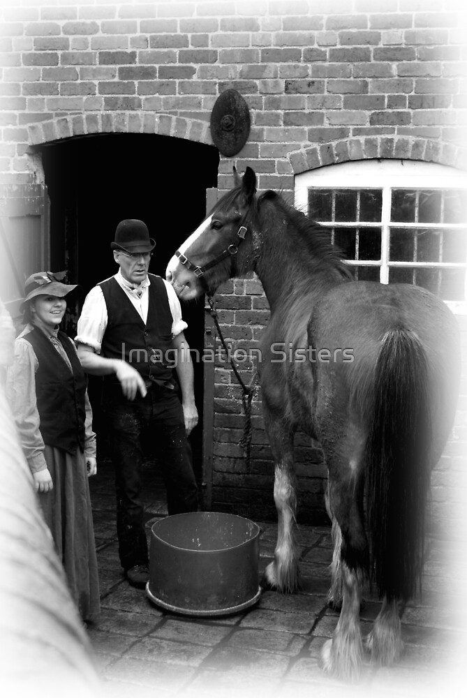THE STABLE MAN by tbailey