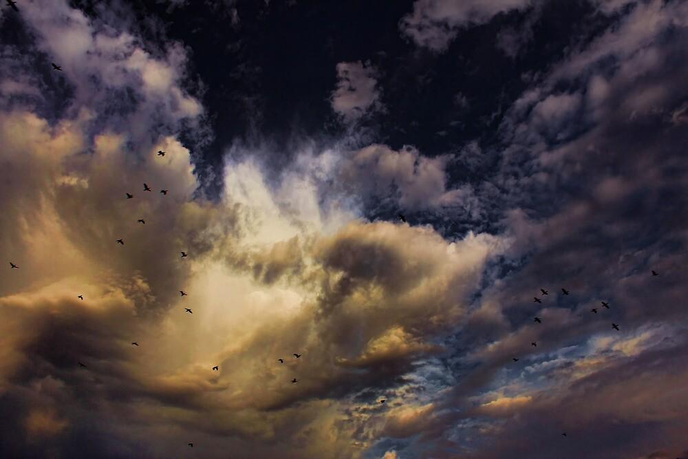 Cloud 20121111-74 by Carolyn  Fletcher