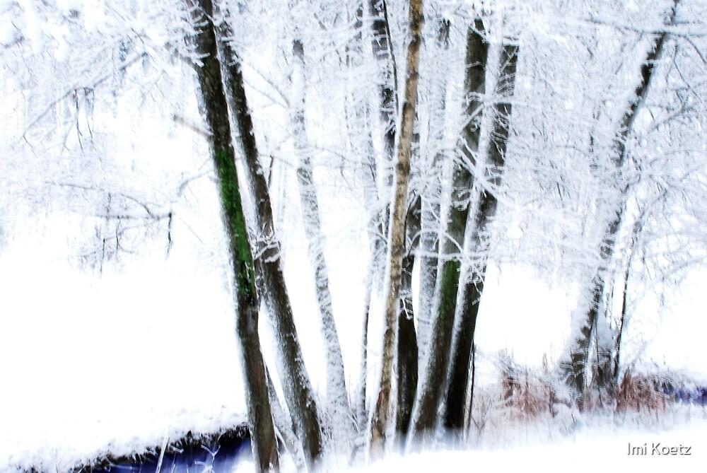 Artscape   -   The frozen River by Imi Koetz