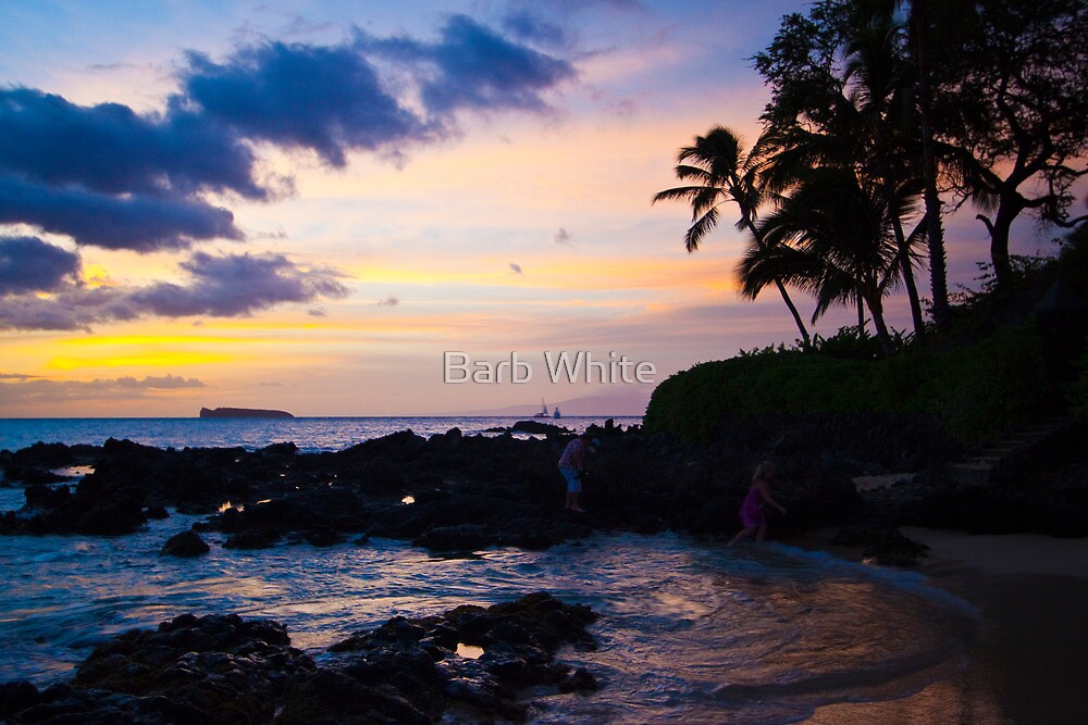 Sunset at Makena Cove, Maui by Barb White