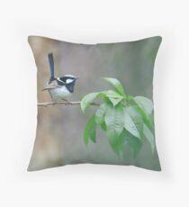 Male Superb Fairy Wren on a Peach Branch Throw Pillow