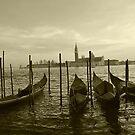 Venice by natureloving