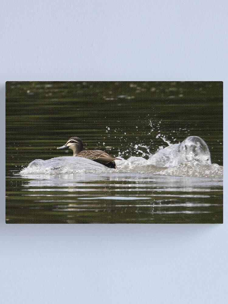 Alternate view of Splashdown!   Canvas Print