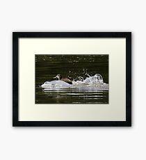 Splashdown!   Framed Print