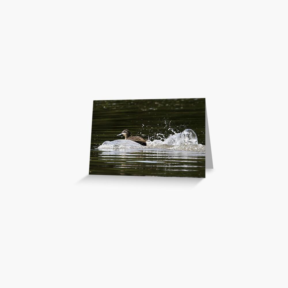 Splashdown!   Greeting Card