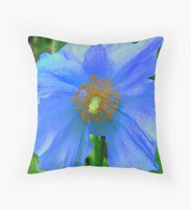 Single Himalayan Blue Poppy  Throw Pillow