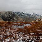 Red Tarn, Lake District by Rebecca Mason