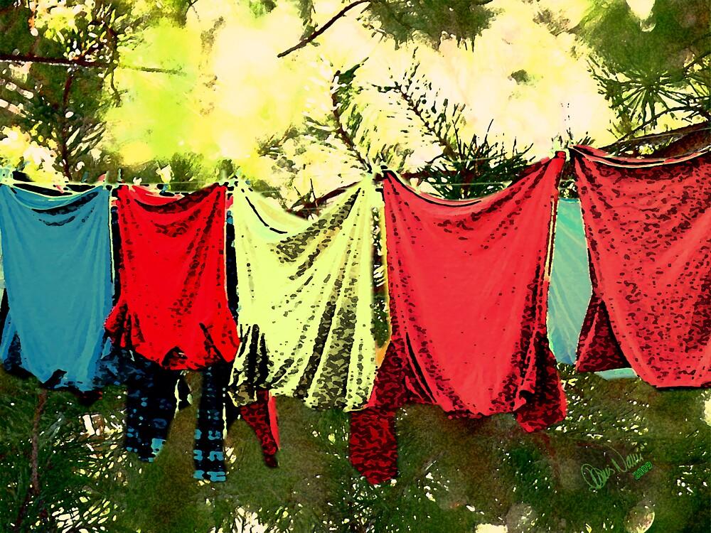 Pine-Laundry by Dennarto