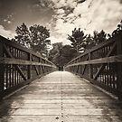 Tiny Bridge by Arkadiy Chernov