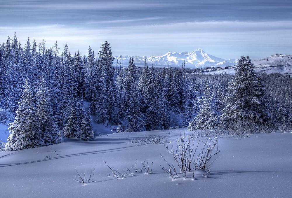 Alaskan Winter by mcornelius