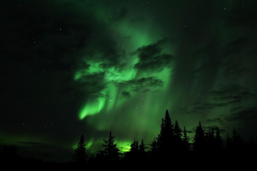 Northern Lights by mcornelius