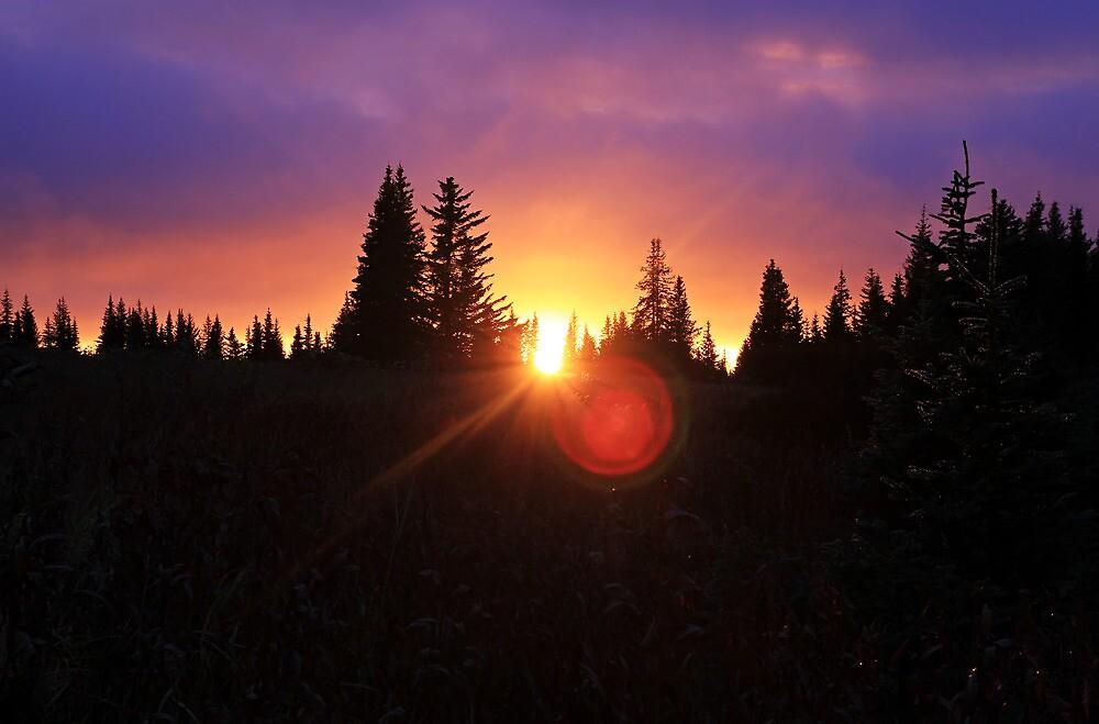 Fall Sunset by mcornelius