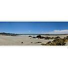 Sisters Beach, Tasmania by Michelle Ricketts