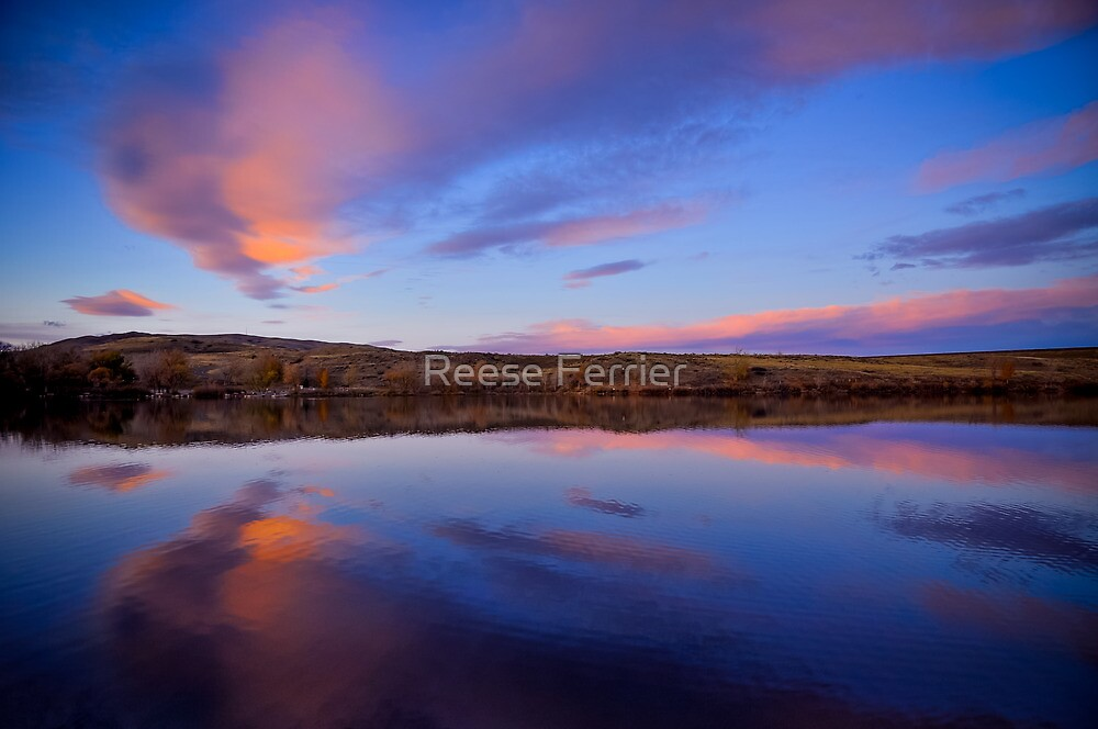 Peaceful Lake Sunset by Reese Ferrier