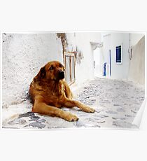 Santorini Alley Poster