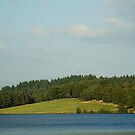 Lake and green hill natural landscape by hpostant