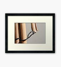Bunnings Framed Print