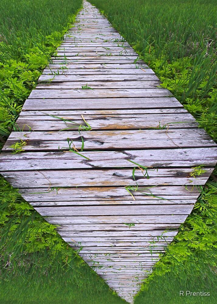 Boardwalk  by R Prentiss