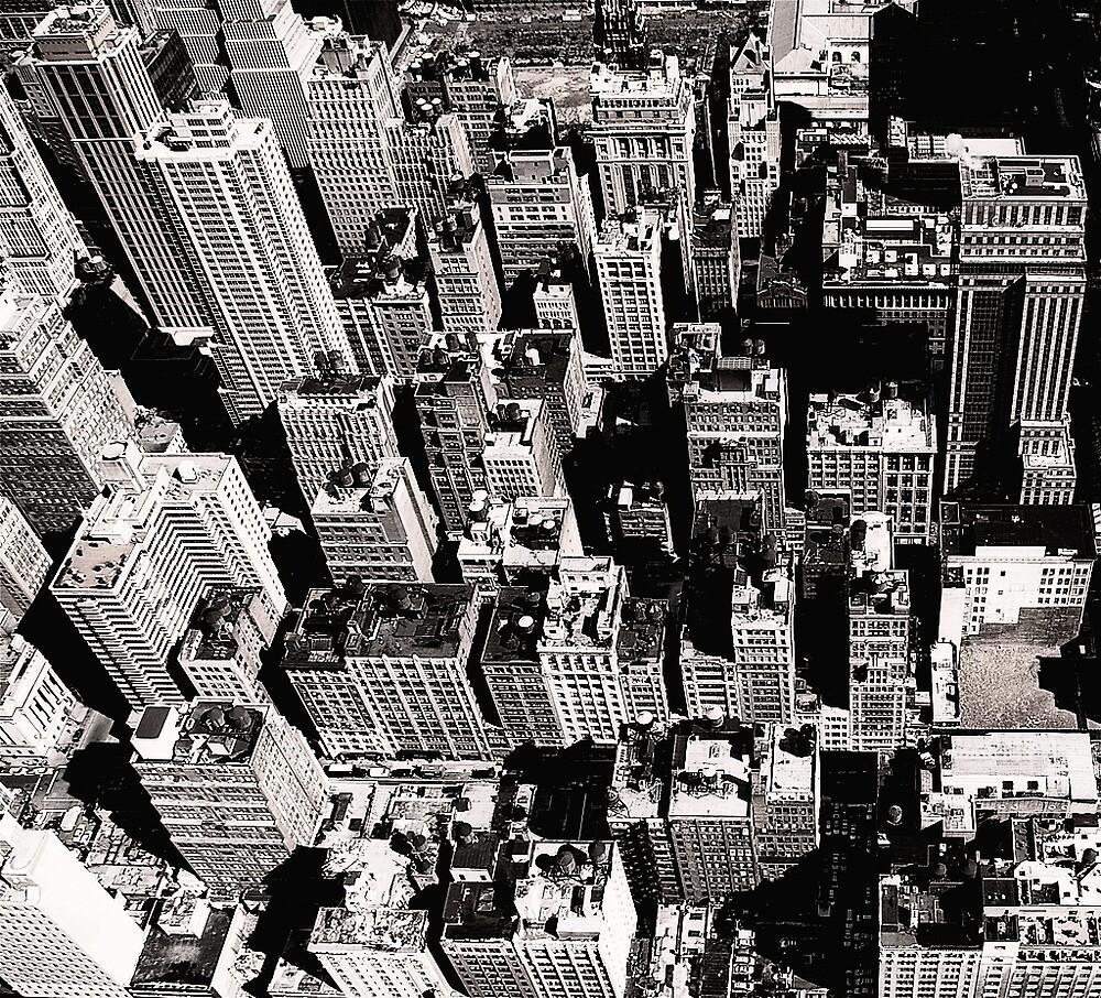 NYCa by Arkadiy Chernov