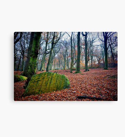 Chevin Forest Park #1 Canvas Print
