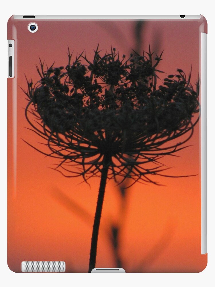 Sunset Lace~ iPad case by Jeananne  Martin
