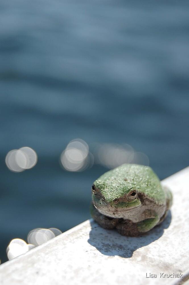 Frog by Lisa  Kruchak